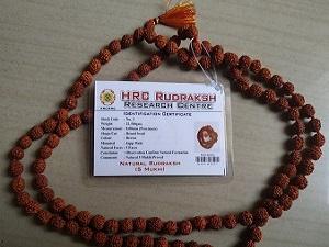 Rudraksha Mala 8 MM
